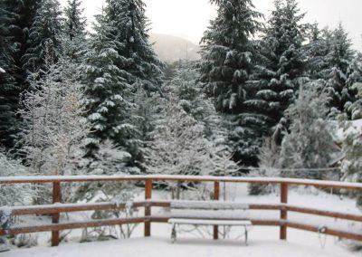 Primer nieve 2013 (1)