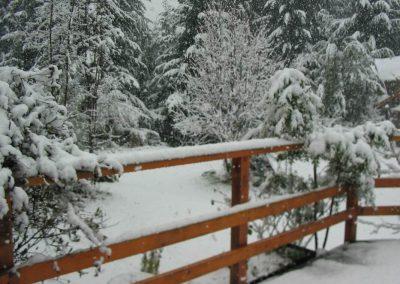 nevada set. (1)